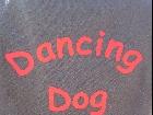 Galerie 0152 Dog Dancing Sisters TdoT Reiffeisen Solingen (24.04.2010) anzeigen.